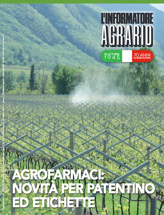 Supplementi de l'Informatore Agrario